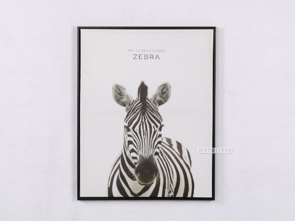 Picture of ZEBRA 30x40 Canvas Framed Print