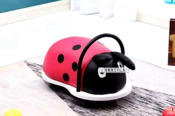 Picture of LADYBIRD KIDS ROLLING TOY
